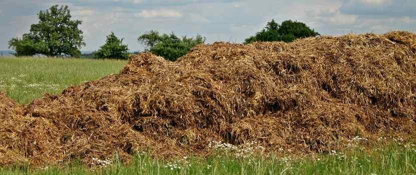 cómo hacer abono orgánico rápido materiales marrones