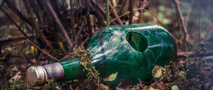 botella en bosque