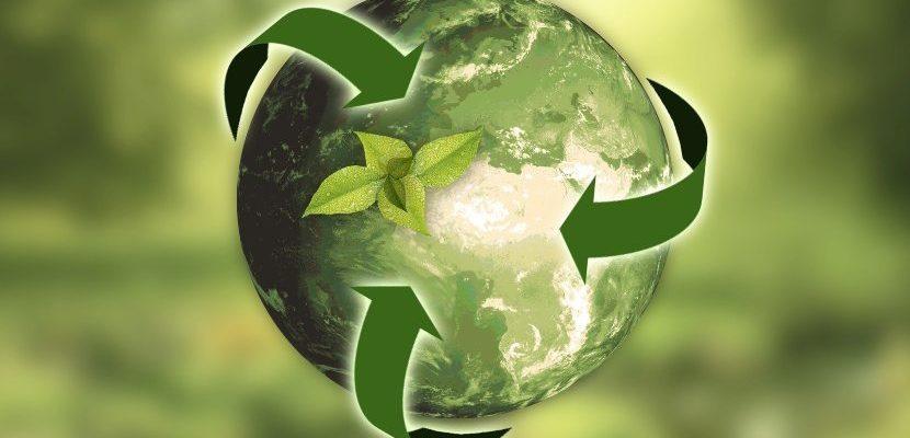 reciclaje y su importancia