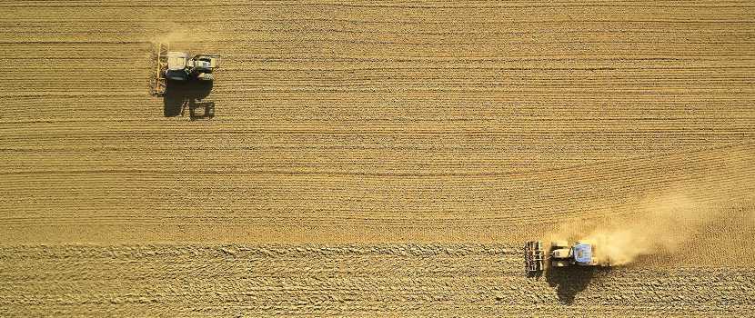 grandes extensiones de tierra para cultivo