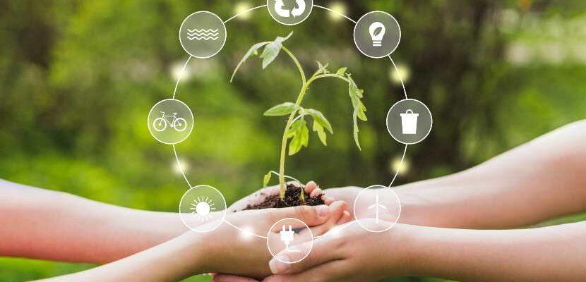 proyectos con energía renovable