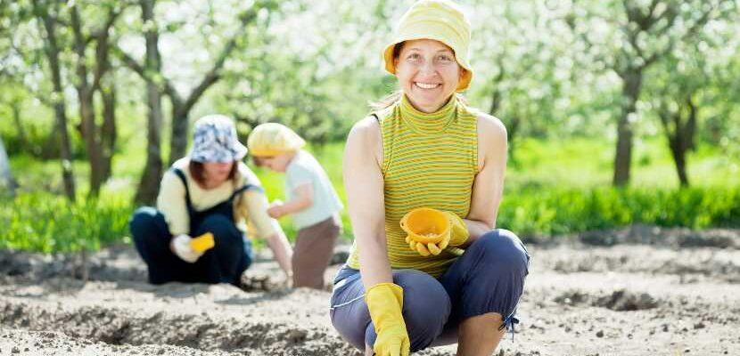 cómo sembrar plantas comestibles en casa